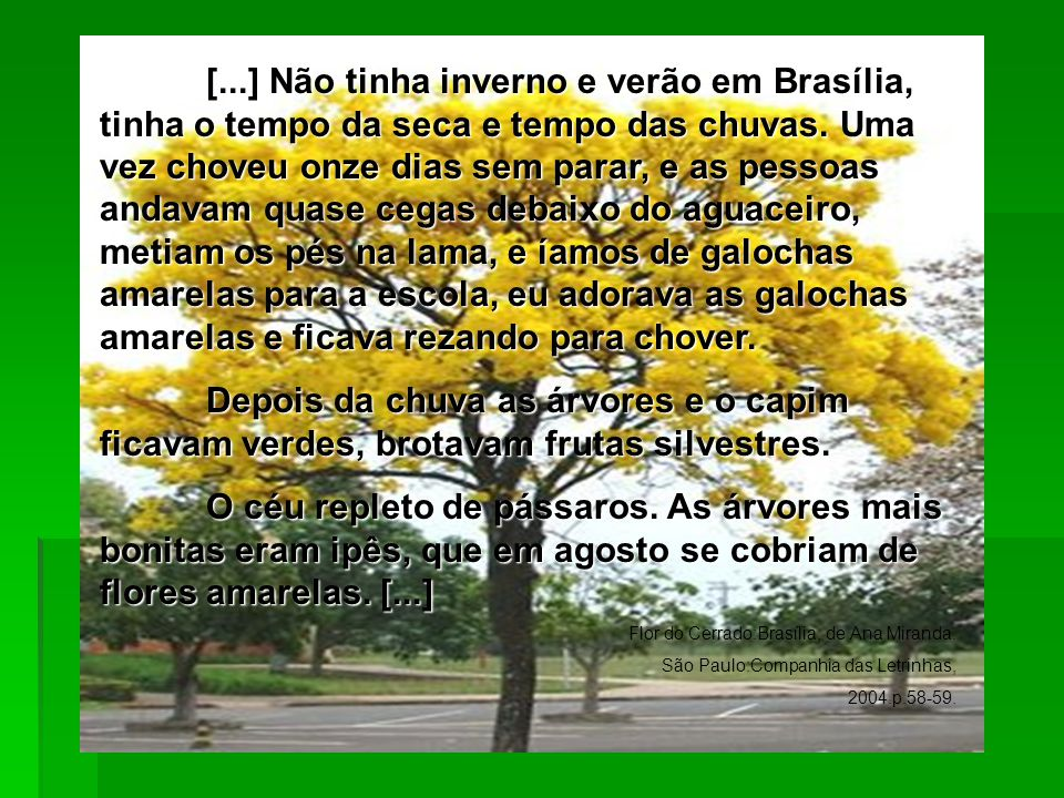 [...] Não tinha inverno e verão em Brasília, tinha o tempo da seca e tempo das chuvas. Uma vez choveu onze dias sem parar, e as pessoas andavam quase cegas debaixo do aguaceiro, metiam os pés na lama, e íamos de galochas amarelas para a escola, eu adorava as galochas amarelas e ficava rezando para chover.